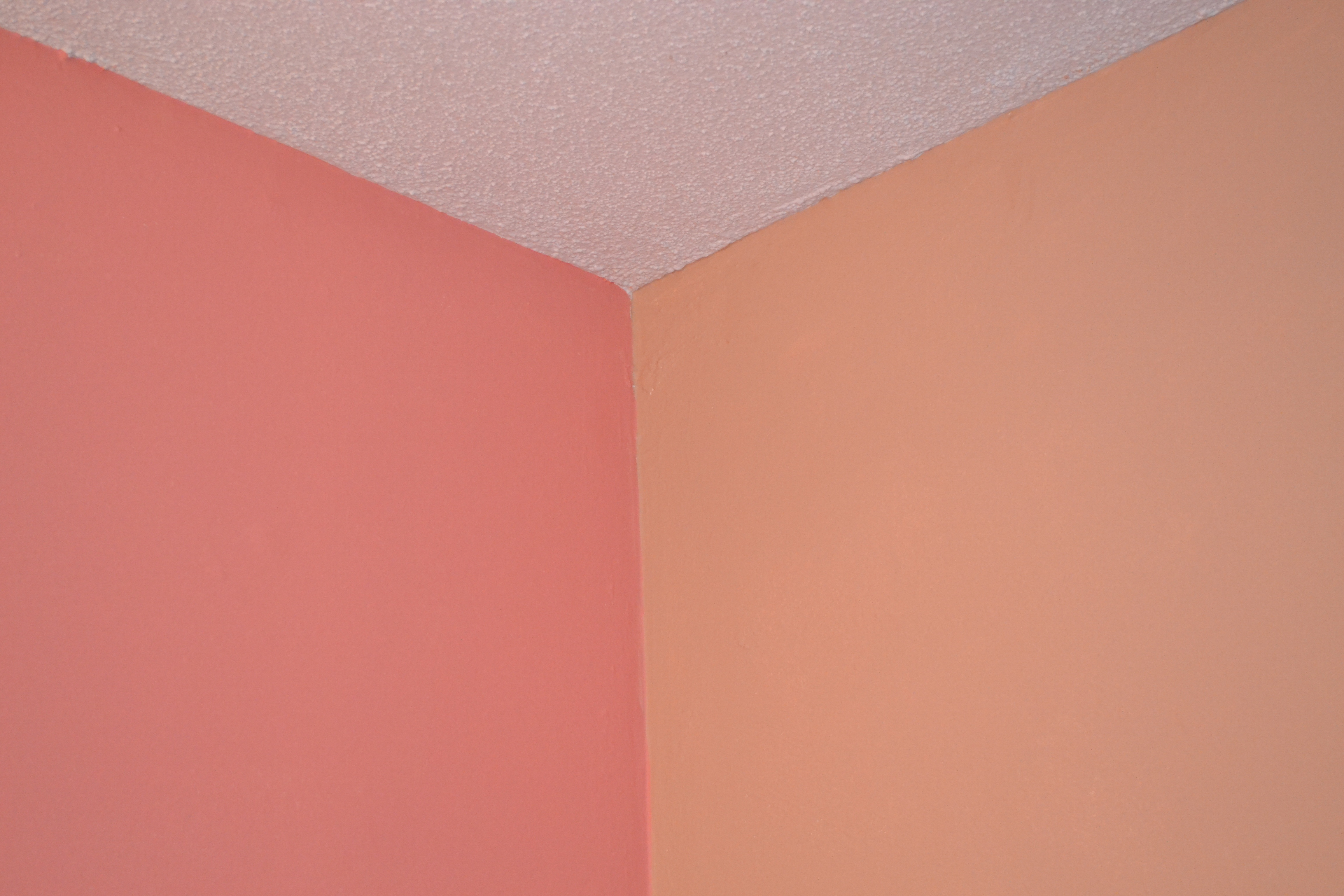 peach color for pinterest - photo #3