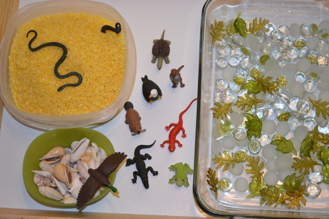 We have colored rice, desert animals, seashells, an assortment of flat marbles & acrylic leaves. Not pictured are some multicolored number buttons, tongs, a strainer, & a scoop.