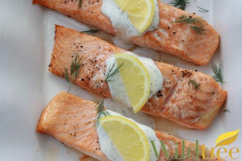 22 Baked Salmon w Dill Sauce