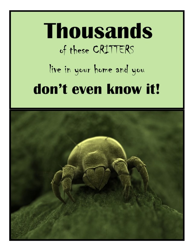 dust-mite with text